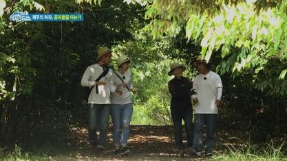 시크릿 아일랜드 제주의 허파, 곶자왈 1부