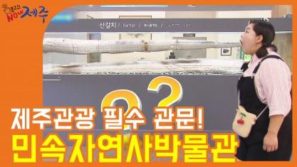 클릭 NOW 제주 제주관광 필수 관문! 민속자연사박물관