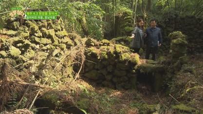 제주를 만나다 생생 삼다 제주 4.3 현장을 찾아서 - 잃어버린 마을, 종남마을